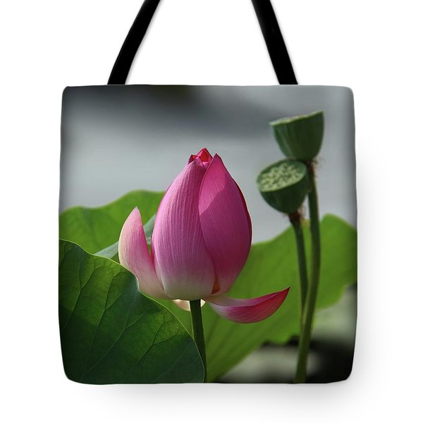 Lotus Flower In Pure Magenta Tote Bag
