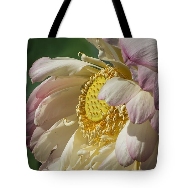 Lotus Glory Tote Bag