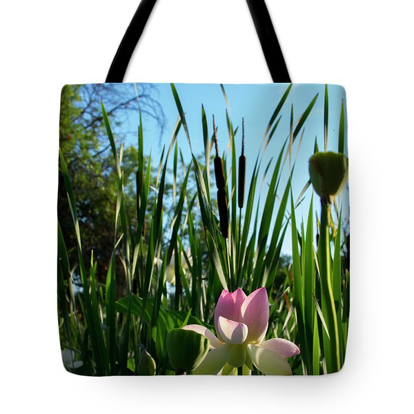 Tote Bag featuring the photograph Lotus Landscape 2 by Buddy Scott