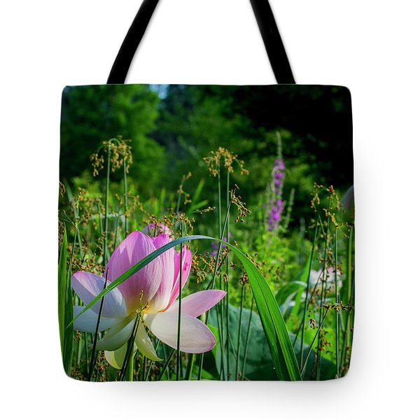Tote Bag featuring the photograph Lotus Landscape 3 by Buddy Scott