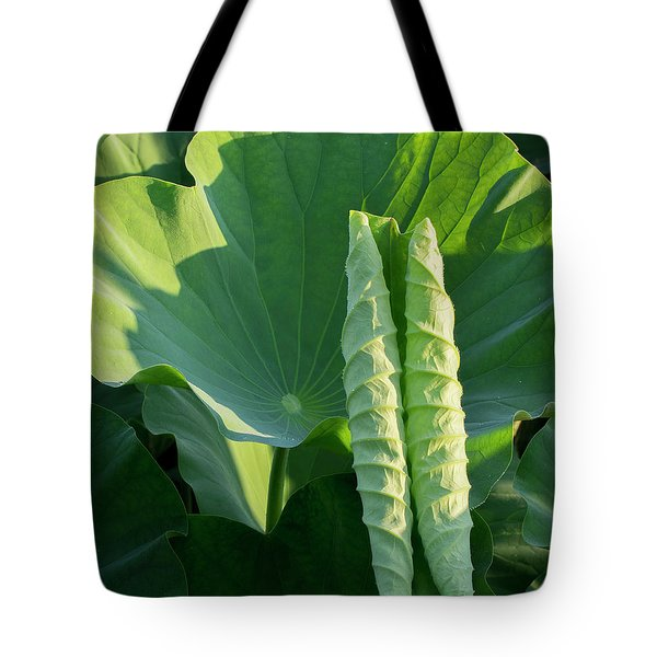 Tote Bag featuring the photograph Lotus Leaf 2017  3 by Buddy Scott