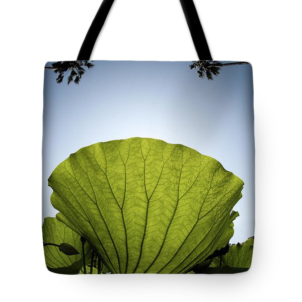 Tote Bag featuring the photograph Lotus Leaf by Harry Spitz