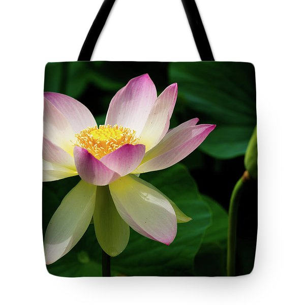 Tote Bag featuring the photograph Lotus Lily In Its Final Days by Dennis Dame