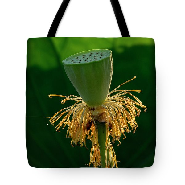 Tote Bag featuring the photograph Lotus Pod 2017 3 by Buddy Scott