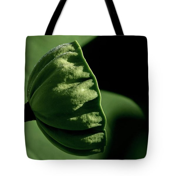 Tote Bag featuring the photograph Lotus Pod 3 by Buddy Scott