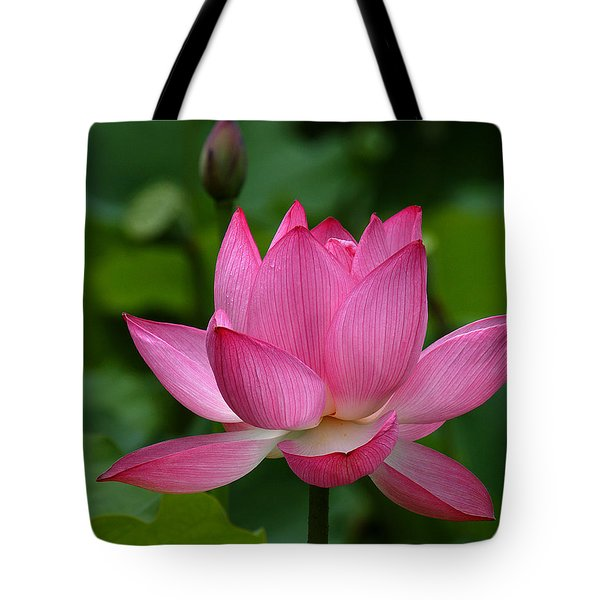 Lotus--shades Of Past And Future Dl029 Tote Bag by Gerry Gantt