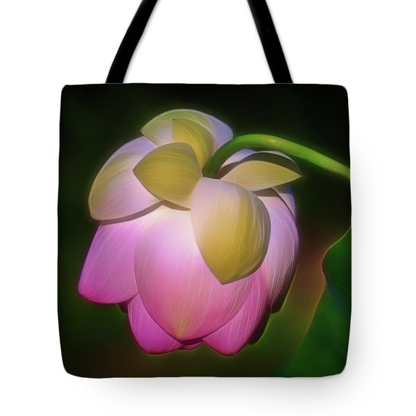 Tote Bag featuring the photograph Lotus, Upside Down  by Cindy Lark Hartman