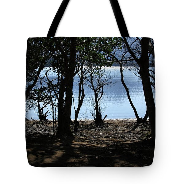Tote Bag featuring the photograph Lough Leane Through The Woods by Aidan Moran
