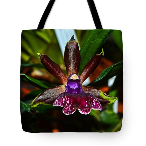 Tote Bag featuring the photograph Louisendorf Rhein Moonlight Orchid 002 by George Bostian