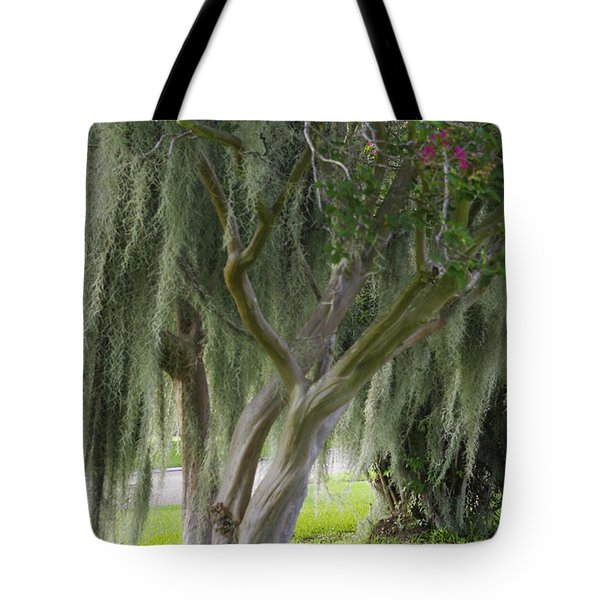 Louisiana Moodiness Tote Bag by Rhonda McDougall