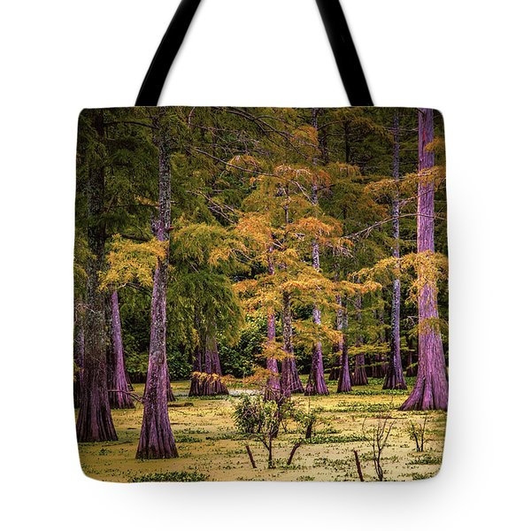 Louisiana Swamps Tote Bag