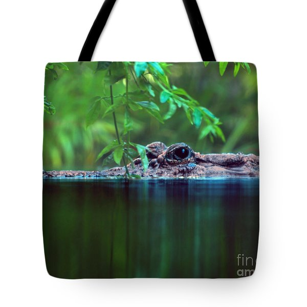 Louisiana Swimming Instructor  Tote Bag