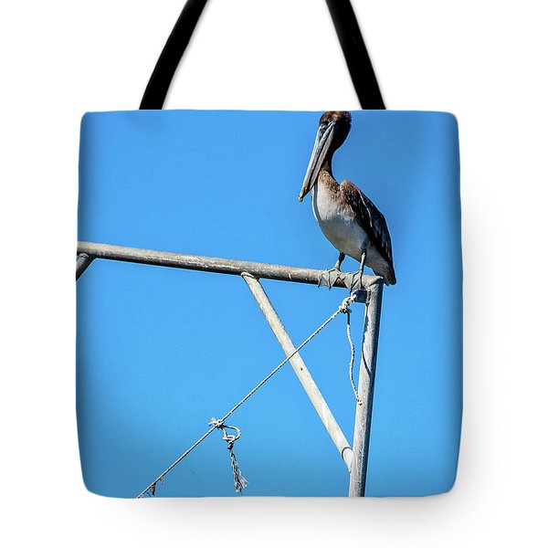Louisiana's State Bird Tote Bag