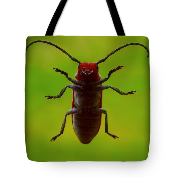 Love Bug Tote Bag by Danielle R T Haney
