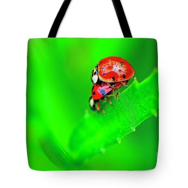 Tote Bag featuring the photograph Love Bugs by Sharon Talson