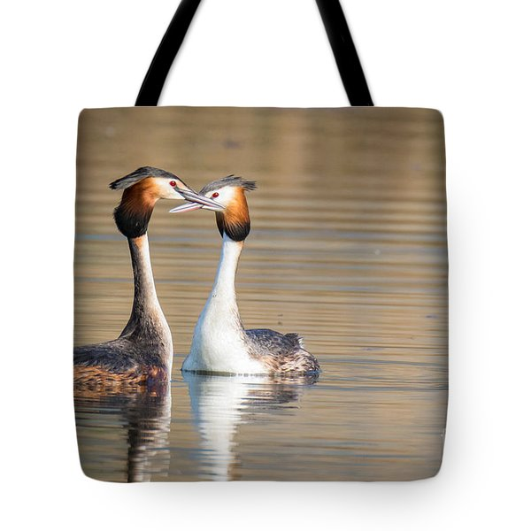 Love Couple Tote Bag