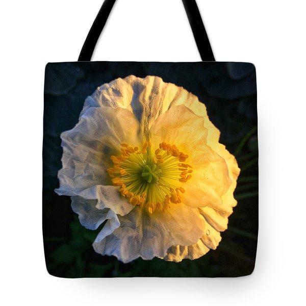 Love In The Morning Tote Bag