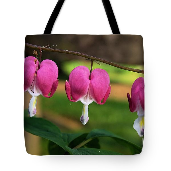Love Is All Around You Tote Bag by John S