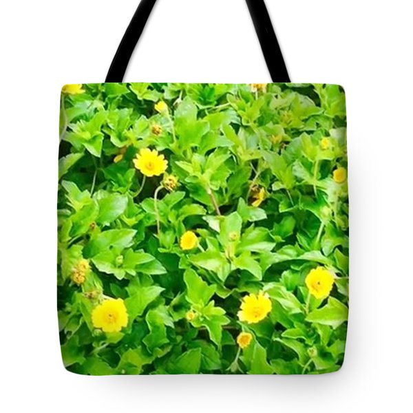 Tote Bag featuring the photograph Love Me Loves Me Not by Cindy Charles Ouellette