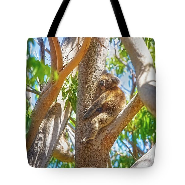 Tote Bag featuring the photograph Love My Tree, Yanchep National Park by Dave Catley