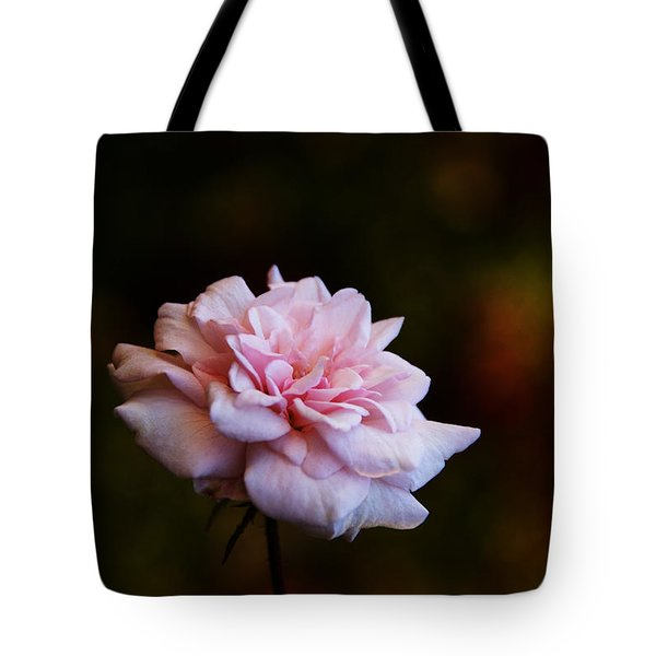 Tote Bag featuring the photograph Love Through Time by Linda Shafer