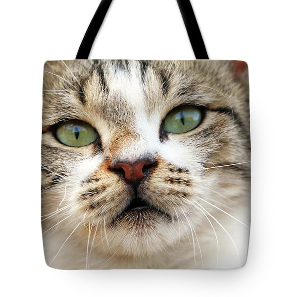 Tote Bag featuring the photograph Loved by Munir Alawi