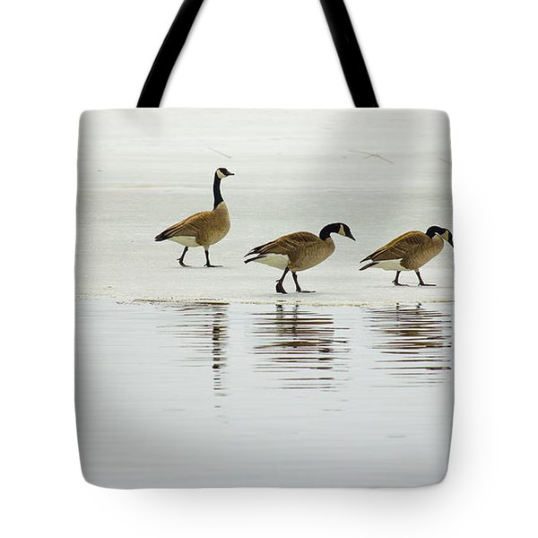 Lovely Day For A Stroll Tote Bag