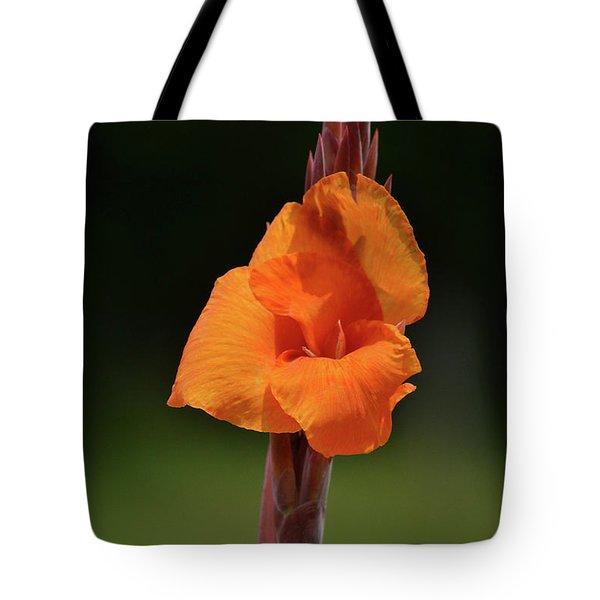 Lovely Iris Flower Tote Bag