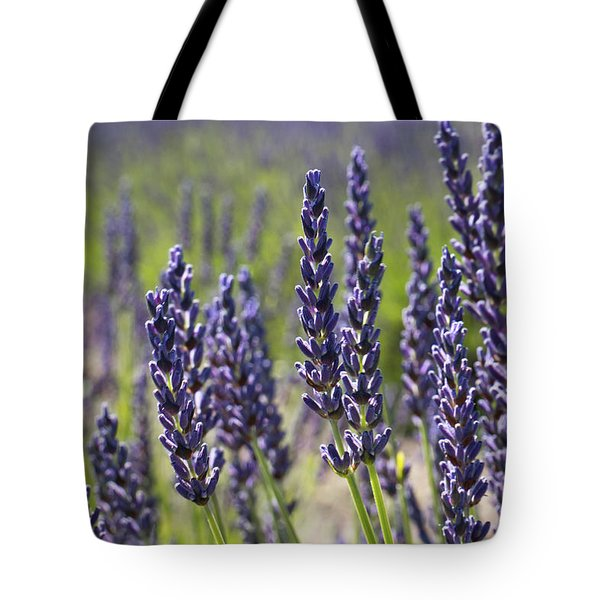 Lovely Lavender Tote Bag