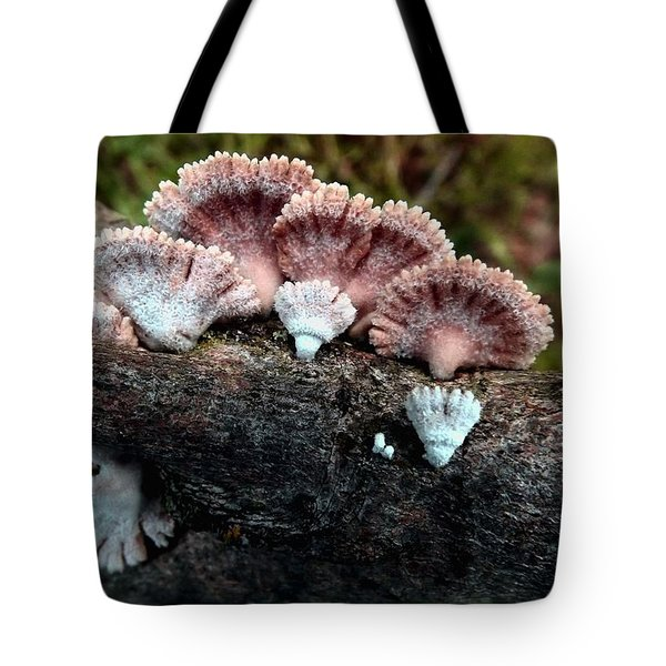 Lovely Lichens Tote Bag