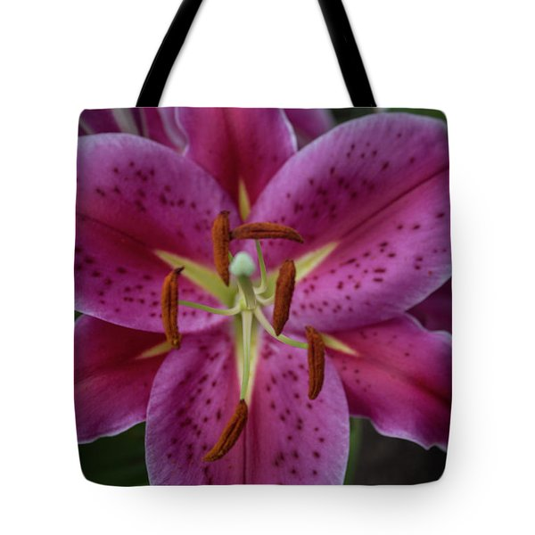 Lovely Lily Tote Bag by Roberta Byram