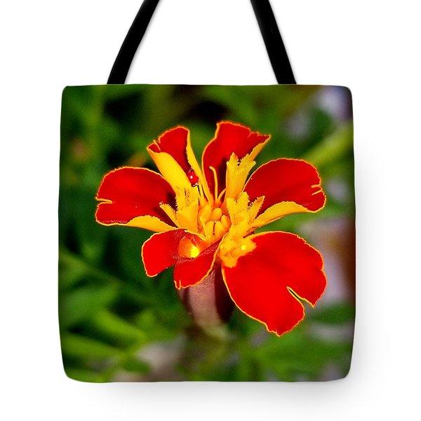 Lovely Little Flower Tote Bag