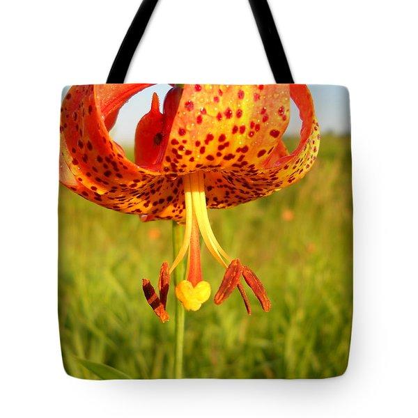 Lovely Orange Spotted Tiger Lily Tote Bag