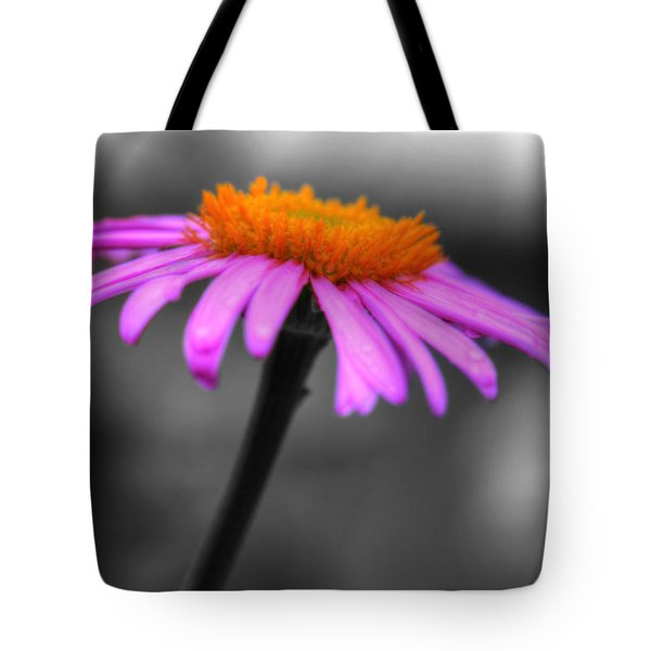 Tote Bag featuring the photograph Lovely Purple And Orange Coneflower Echinacea by Shelley Neff