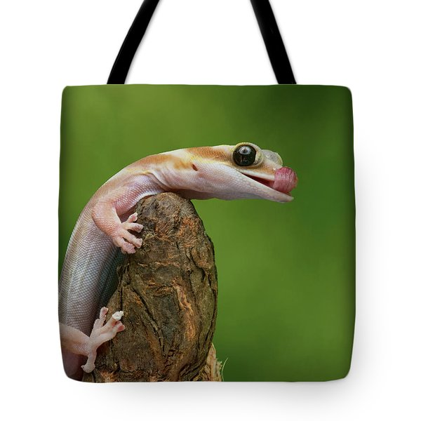 Tote Bag featuring the photograph Lovely Water - Velvet Gecko by Nikolyn McDonald