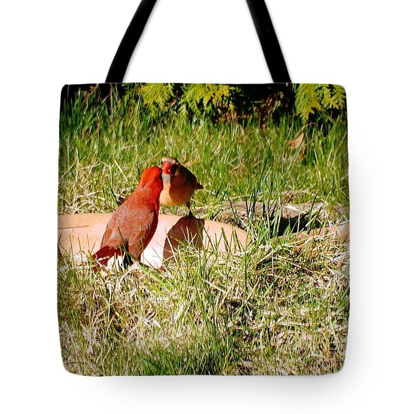 Tote Bag featuring the photograph Lovers by Vicky Tarcau