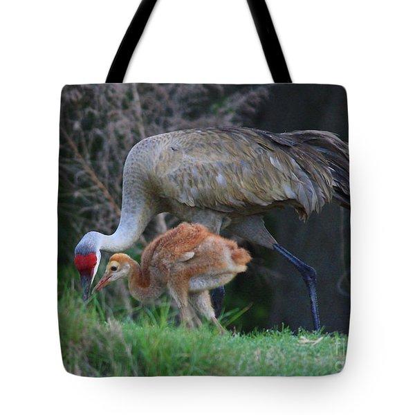 Loving Sandhill With Colt Tote Bag