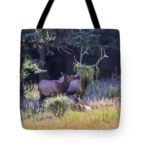 Loving The New Hairdo Tote Bag