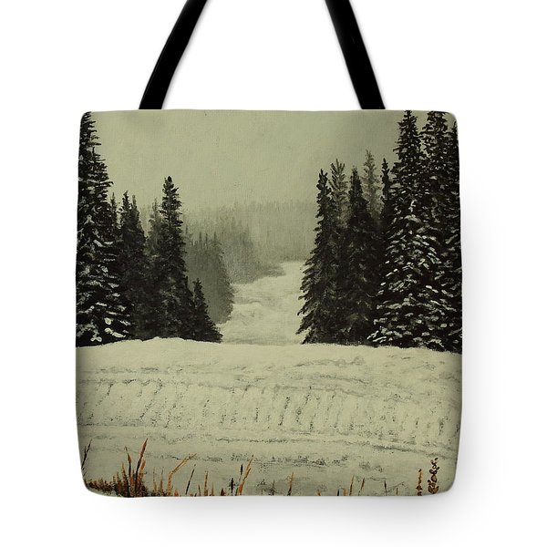 Low Ceiling Tote Bag