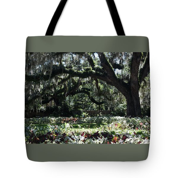 Tote Bag featuring the photograph Low Country Series I by Suzanne Gaff