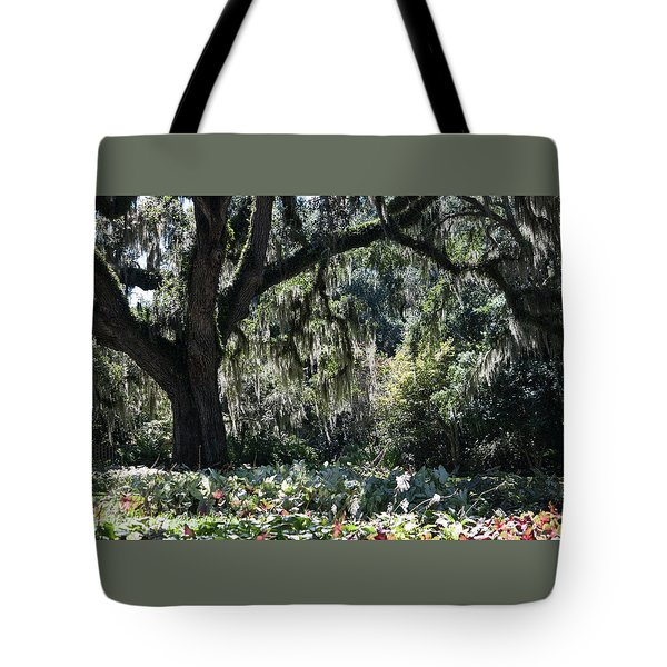 Tote Bag featuring the photograph Low Country Series II by Suzanne Gaff