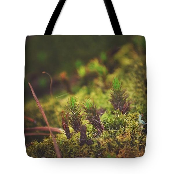 low in the valley -Loganville Georgia  Tote Bag