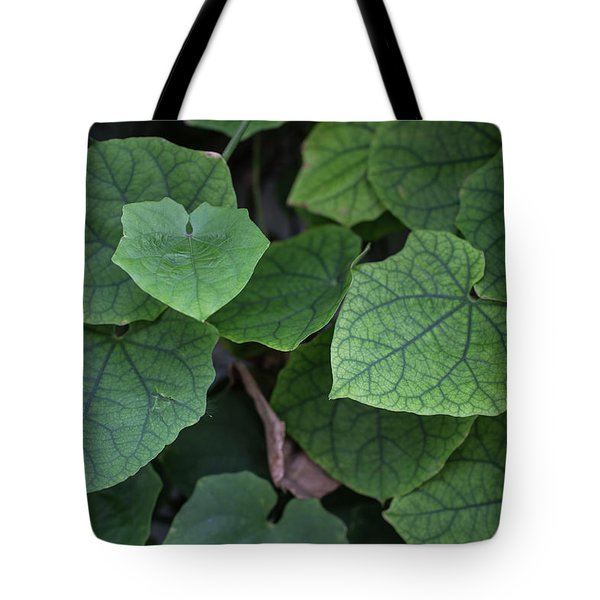 Tote Bag featuring the photograph Low Key Green Vines by Jingjits Photography