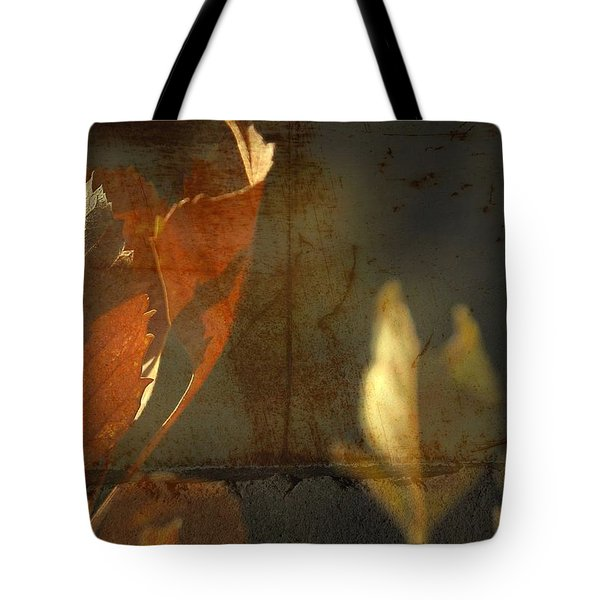Low Months  Tote Bag