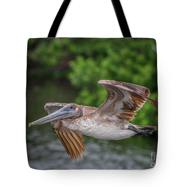 Low Pass Pelican #1 Tote Bag