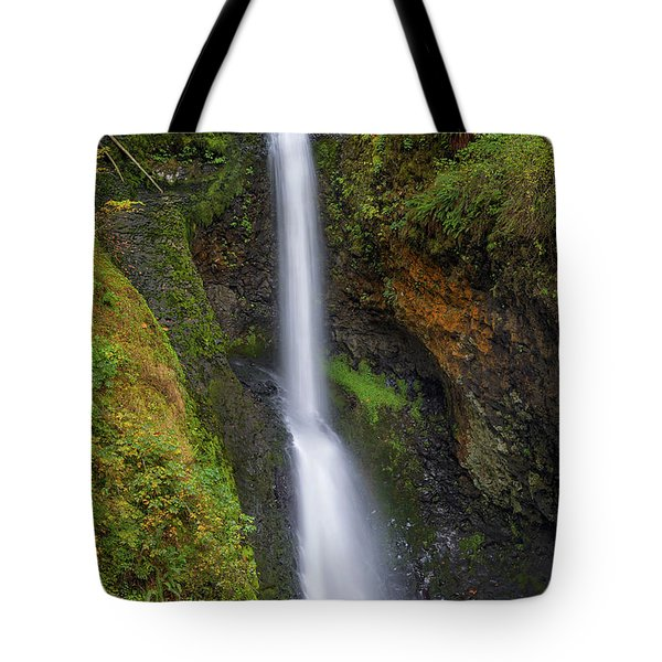 Lower Butte Creek Falls In Fall Season Tote Bag by David Gn
