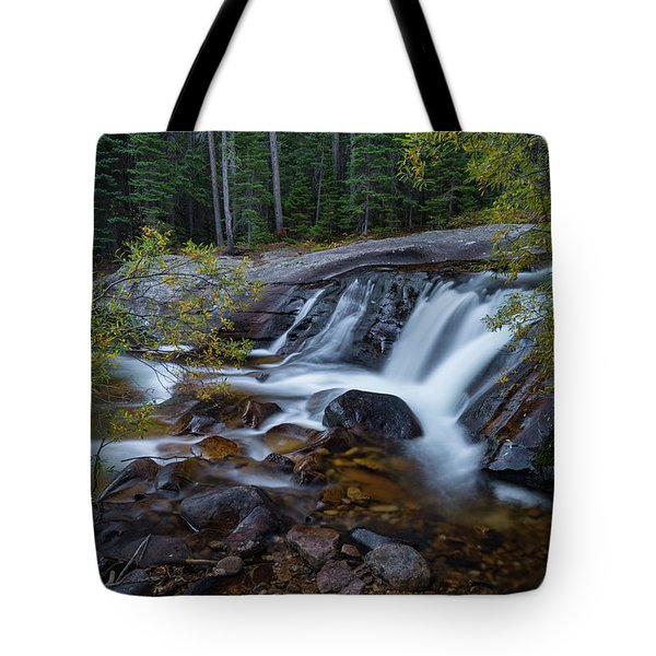 Lower Copeland Falls Tote Bag by Gary Lengyel