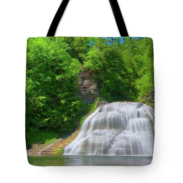 Tote Bag featuring the photograph Lower Falls 0485 by Guy Whiteley