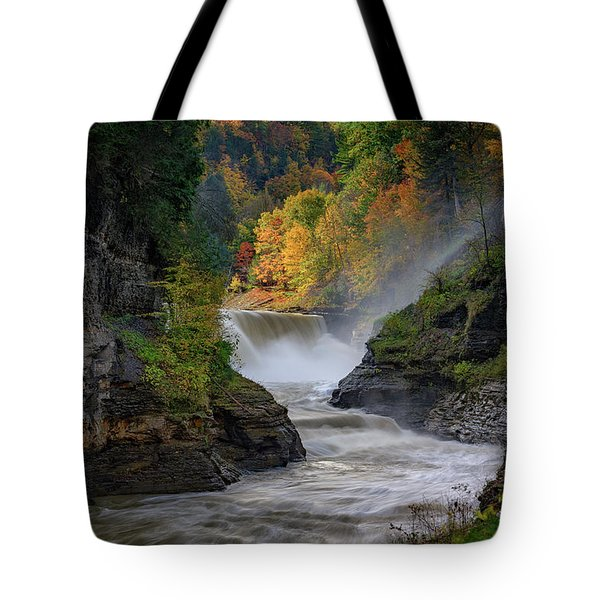 Lower Falls Of The Genesee River Tote Bag