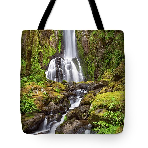 Tote Bag featuring the photograph Lower Kentucky Falls In Spring by Patricia Davidson